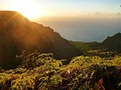 HawaiianStyleAdventures