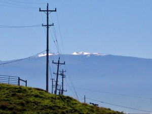 Mauna Kea MM
